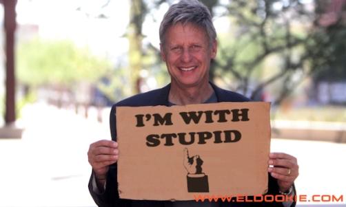 gary-johnson-stupid