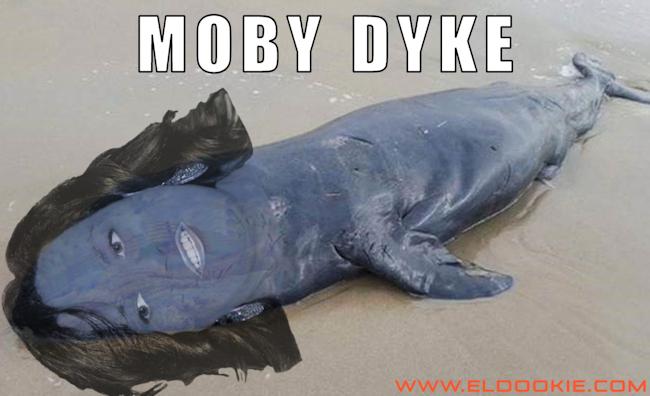 moby-dyke-650x